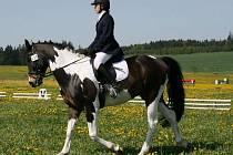 Veronika Plucarová z Valtínova na koni Mairo zvítězila v kvalifikačním závodě Bronzové podkovy ve Dvorečku. Na koni Norbel obsadila drihé místo.