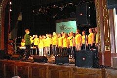 Benefiční koncert pro Nadační fond dětské onkologie Krtek v Dačicích se vydařil.