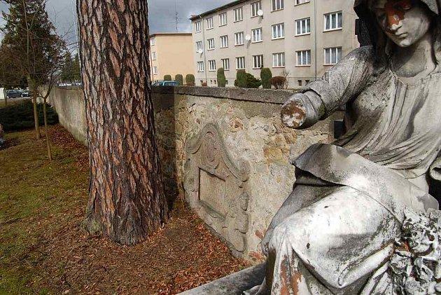 Za havarijní stav zdi hřbitova u jindřichohradecké trojice může strom.