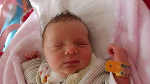Natálie Průchová se narodila 6. dubna Haně a Václavu Průchovým z Lásenice. Měřila 47 centimetrů a vážila 2910 gramů.