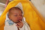 Jakub Meisel se narodil 5. srpna Blance Ludvíkové a Milanu Meiselovi z Tábora. Měřil 49 cm a vážil 3420 gramů.