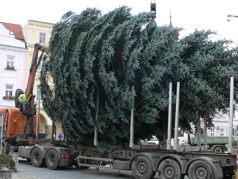 Stavění vánočního stromu v J. Hradci.