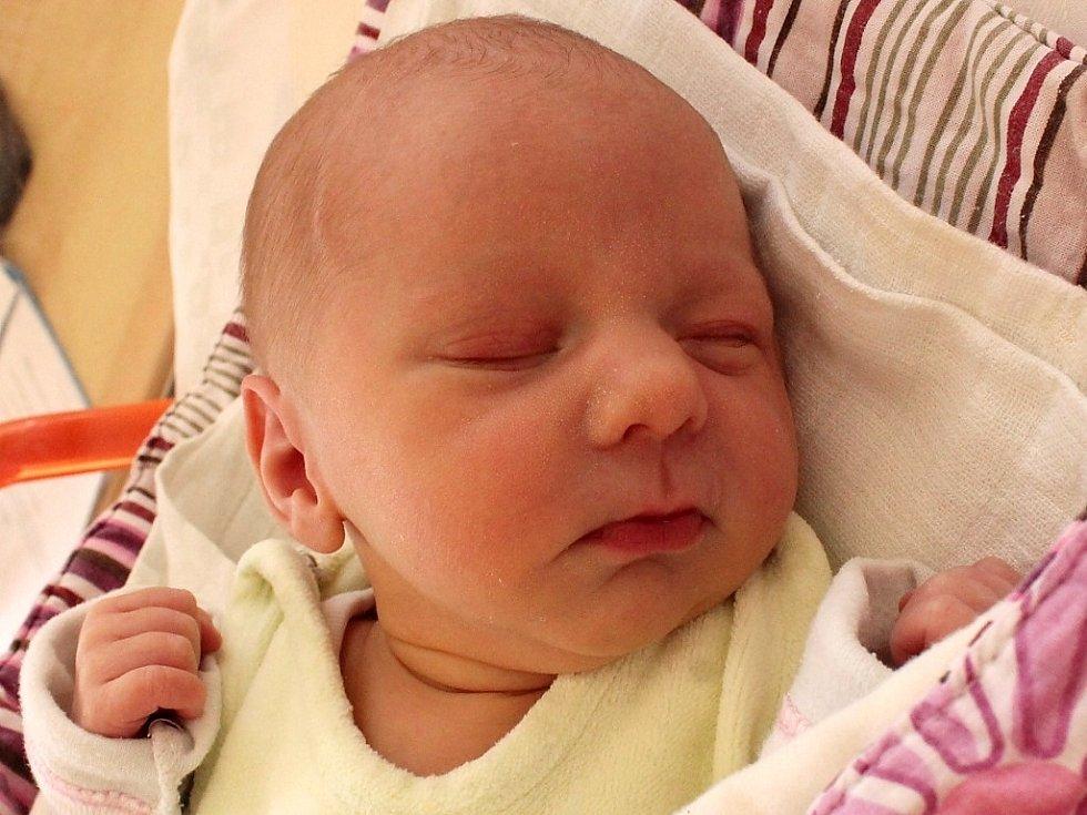 Amy Plucarová se narodila 19. května Lauře Heřmánkové a Michalu Plucarovi z Dolního Skrýchova. Měřila 44 centimetrů a vážila 2510 gramů.