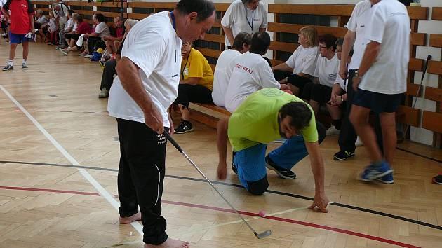 Zlatá střela. Ve střelbě golfovým míčkem vybojoval Karel Toufar (na snímku) pro tým z Vysočiny nejcennější medaili.