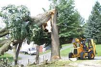Bouře, která se přehnala nad obcí Moraveč na Pelhřimovsku, přelomila mohutný staletý strom. Odstranění polomu stálo tamní dobrovolné hasiče několik hodin práce.