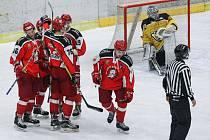 Tříbrankové manko dokázali v závěru zápasu smazat pelhřimovští  Lední medvědi. Z Moravských Budějovic odvezli bod, když prohráli v nájezdech.