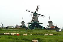 Pelhřimovské Gymnázium chce v navázaných kontaktech v Nizozemsku pokračovat, město už to ale nebude dotovat z fondu.