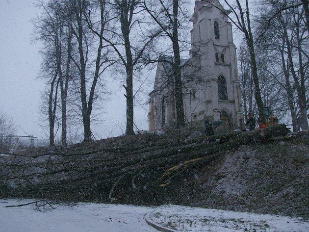 Kácení stromů u Kalvárie už začalo.
