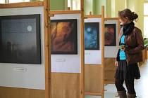 V přízemí pelhřimovské městské knihovny v březnu zaujmou fotografické koláže a obrazy žirovnické výtvarnice Marcely Filipové.