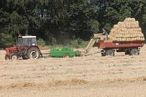 Z polí v těchto dnech mizí hlavně jarní ječmen, ozimá pšenice a řepka olejná.