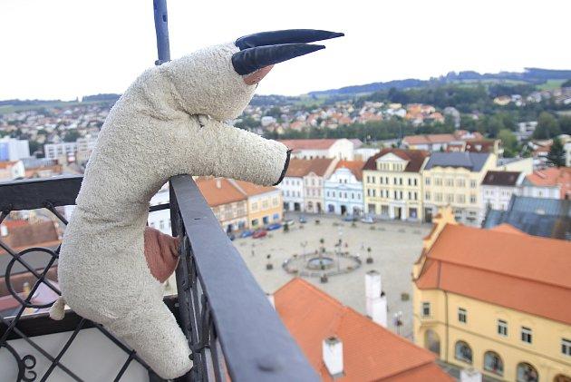 Věž kostela sv. Bartoloměje vPelhřimově lidé zdolávají splyšovými kozami Rózou a Rézou.