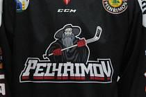 Junioři Ledních Medvědů budou v následující sezoně hrát ve třetí nejvyšší soutěži.