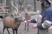 Nenechavci to podle Ladislava Váni (na snímku) v jeho zvířecím ráji museli dobře znát. Dovnitř se vlámali zadem. Vyhnuli se hlídacím psům i oboře, jíž šéfuje jelen