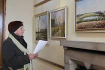 Vysočina v obrazech. Právě to je název výstavy, na kterou se zájemci mohou přijít podívat do Galerie M v Pelhřimově.
