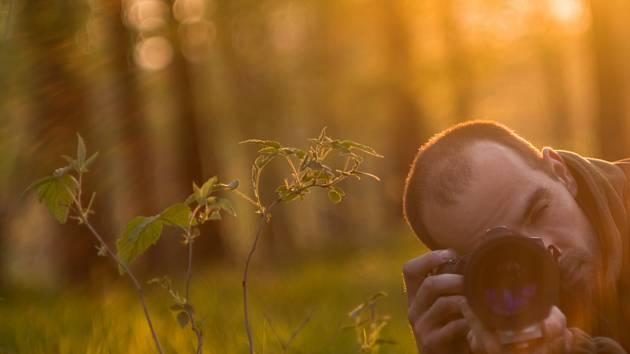 Lidé fotí Jevišovice. Knihovna vyhlásila soutěž o nejhezčí podzimní snímek
