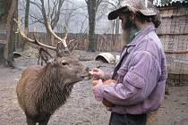 Na statku přebývá v samostatné ohradě s několika laňkami i samotný Král. Ladislav Váňa tak pojmenoval jelena, jehož si osobně hodně považuje. Opak by ostatně nedovedl říci asi o žádném zvířeti.