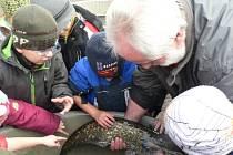 V pátek si nenechávají návštěvu rybárny  ujít děti z mateřských a základních škol.