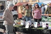 Farmářské trhy v Pelhřimově
