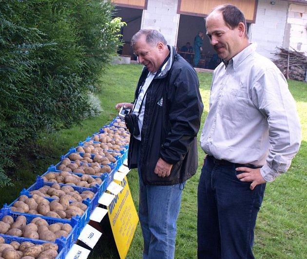 Součástí setkání nejen pěstitelů brambor v Senožatech byla také výstava nejrůznějších odrůd této oblíbené přílohové zeleniny.