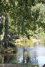 Rybářské závody v Bohdalíně.