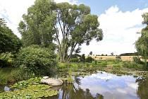 Bouchalovy rybníčky na okraji Žirovnice.