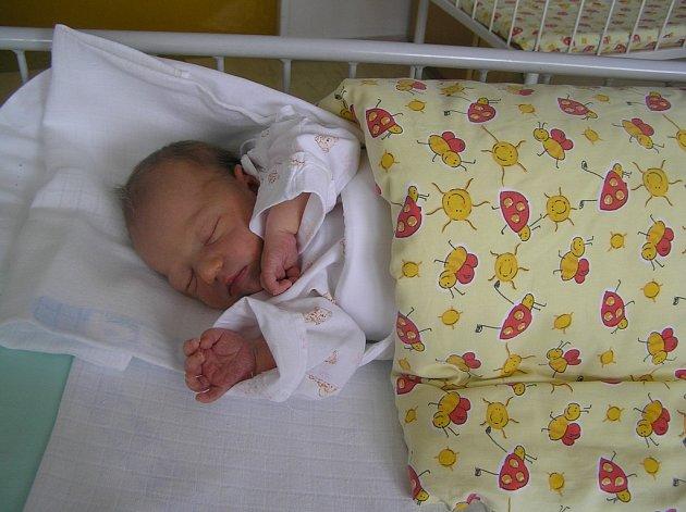 Malé Helence, jak holčičku pojmenovaly zdravotní sestřičky z pelhřimovské nemocnice, se podle lékařů daří dobře. Její osud ji zatím netrápí.
