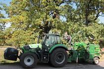 Po ošetření stromů přichází na řadu úklid větví.