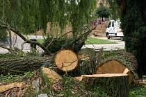 V Pelhřimově na Pražské ulici spadly vzrostlé vrby na tři zaparkovaná auta. Hasiči stromy rozřezali a vozidla vyprostili. Jen díky velkému štěstí nedošlo k tragédii.