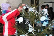 Děti originálně nazdobily vánoční stromečky na Masarykově náměstí v Pelhřimově.