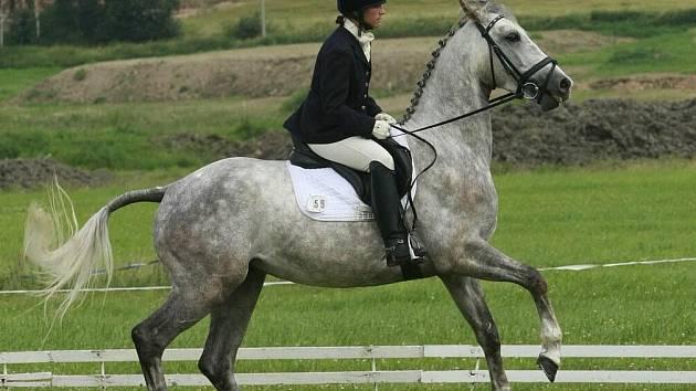 Nejlepší koně a jezdci poměřili v Humpolci síly ve všestrannosti.