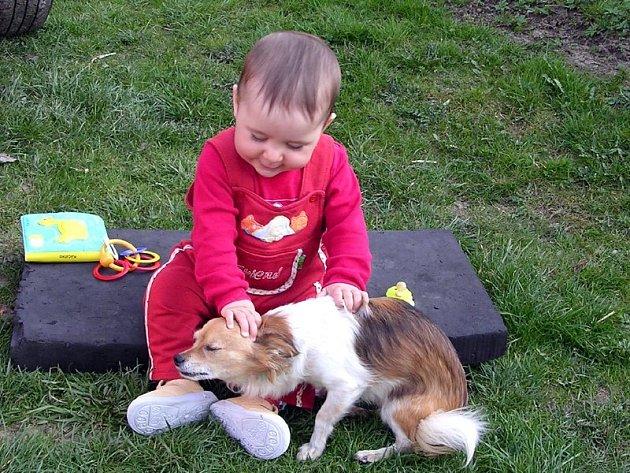 Zejména pro malé děti představuje infi kované klíště velkou hrozbu. To se na vás lehce přenese i z domácího mazlíčka.