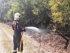 Na likvidaci požáru hasiči z Pacova a z Obrataně nasadili několik vodních proudů a po pár desítkách minut intenzivního hašení se jim podařilo požár lokalizovat a následně i zlikvidovat.