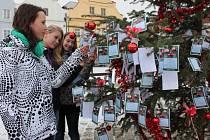 Vánoční strom přání. Ilustrační foto.