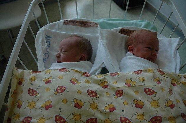 Jakub Holý 2 680 g a Filip Holý 2 650 g, 14. června 2010, Pelhřimov