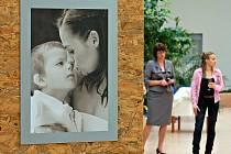 V pelhřimovské nemocnici byla v pondělí slavnostně zahájena výstava, která upozorňuje ženy především na prevenci rakoviny prsu.
