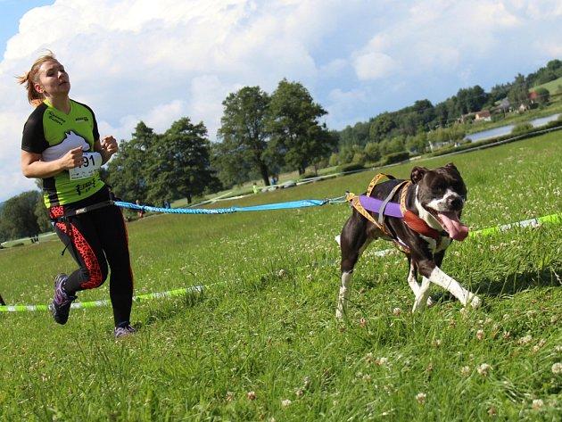 Osmdesát osm závodníků se tuto sobotu zúčastnilo sportu nesoucí název canicross.