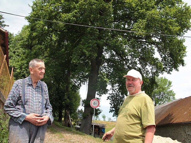 Josef Skala (vlevo) a Josef Doležal před letitým dubem ve Strměchách.