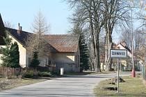 Pacovská ulice v Černovicích pokácením starých kaštanů prokoukla. Nová zeleň bude vysazena na podzim.