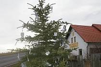Unikátní vánoční stromek stojí v Olešné u Pelhřimova