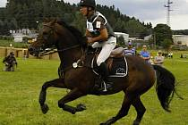 Dnes již dvojnásobný vítěz Zlaté podkovy a mistr České republiky ve všestrannosti Lubomír Vrtek a zlatý kůň Diráno 1 (na snímku).