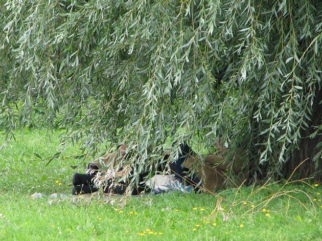 Místo pod vrbou v Batelově se stalo oběma ženám dočasným domovem
