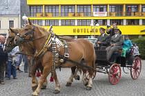 Desítky koní mohli vidět lidé na humpoleckém Horním náměstí v neděli dopoledne.