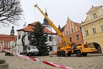 Kácení vánočního stromu a jeho následné umístění na Masarykově náměstí v Pelhřimově.