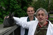 Třídenní výstava drobného hospodářského zvířectva v Kamenici nad Lipou. Na snímku jsou klienti Ústavu sociální péče v Lidmani, kteří jsou zároveň vzornými členy kamenických chovatelů.