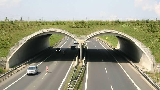 Takto vypadá například ekodukt na dálnici D6 u Jenišova. Podobné vzniknou i na Vysočině.