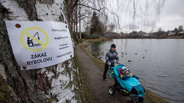 Vícejazyčné nápisy zakazující rybolov v Cihelském rybníku v Humpolci.