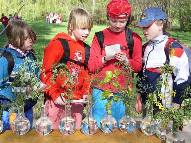 Na pět set dětí ve čtvrtek 19. dubna v Městských sadech v Pelhřimově oslavilo Den Země. Na snímku poznávají jednotlivé stromy dívky ze třetí třídy základní školy v Žirovnici.