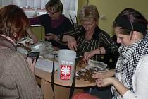 Na pelhřimovské charitě se počítal výsledek letošní Tříkrálové sbírky.