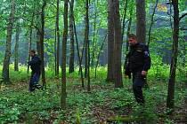 Policisté, hasiči i dobrovolníci pátrali v lesích na Pacovsku po zmizelém muži i přes noc. Úspěšní však byli až druhý den odpoledne.