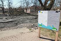 Pelhřimovské Strachovské rybníky obklopuje městská zástavba.